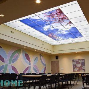 سقف مدرن (کششی)